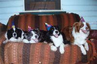 Kirra's 2nd birthday